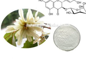 Weight Loss Pure Natural Astilbin 15%, 98%; Astilbin Extract pictures & photos