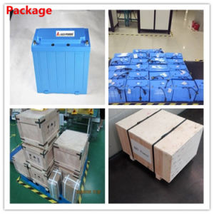 Deep Cycle Rechargeable 26650 LiFePO4 Battery Pack 12V 120ah with ABS Case pictures & photos