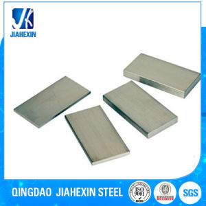 Iron/Carbon Steel/Stainless Steel Galvanized/Coated/Painted Flat Bar pictures & photos