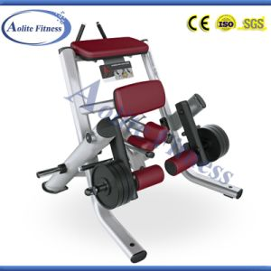 Fitness Equipment Kneeling Leg Curl Gym Machine pictures & photos