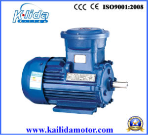 Three Phase Induction Electric Motor (cast iron) with CE Certificate OEM Supplier pictures & photos