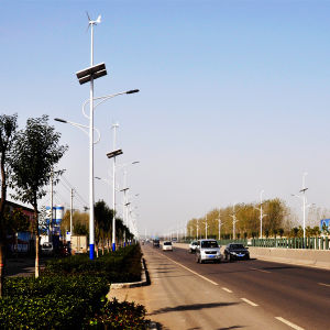 50W off Grid Wind Solar LED Energy Saving Street Light pictures & photos