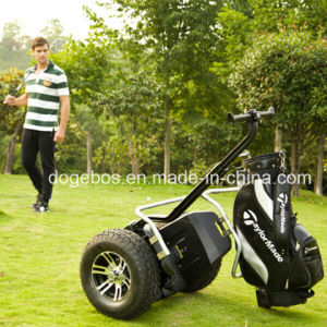 Scooter X2 Golf pictures & photos