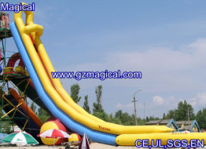 Inflatable Waterslide, Iinflatable Water Slide (mic-031) pictures & photos