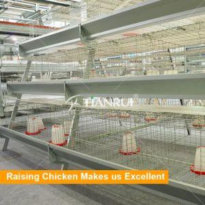 2017 New Design Hot Galvanized Pullet Breeding Chicken Cage pictures & photos