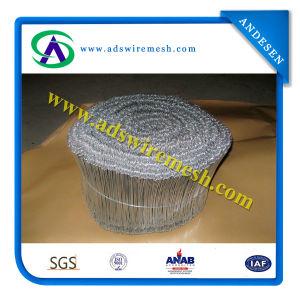 Galvanized Loop Tie Wire (ISO9001) pictures & photos