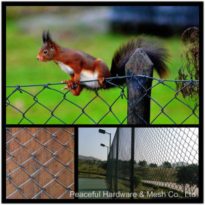 PVC Chain Link Fence/Wire Mesh Fence pictures & photos