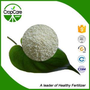 High Quality NPK Slow Release Fertilizer pictures & photos