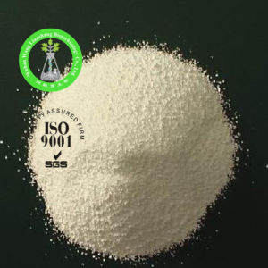 Herbicide Raw Powder Paraformaldehyde CAS: 30525-89-4 pictures & photos