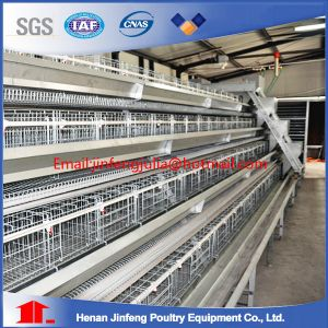 Poultry Chicken Cages Made in China pictures & photos