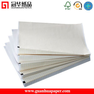 210mm 216mm Width Six Channel Medical ECG Paper pictures & photos