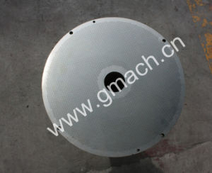 Filter Disc, Filter Plate Staniless Steel Filter Plate, Filter for Polymer pictures & photos