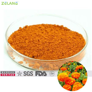 Marigold Extract 20% Lutein Powder for Food Supplement pictures & photos