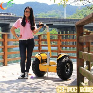 Chinese Two Wheel Self Balance Electric Bike Shop pictures & photos