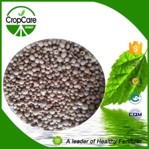 Compound Fertilizer NPK 25-5-5+Te pictures & photos
