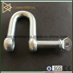 Electro Galvanized EU Type Dee Shackle pictures & photos