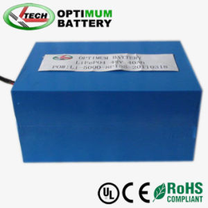 48V 20ah LiFePO4 Battery Pack for E-Scooter EV E-Bike pictures & photos