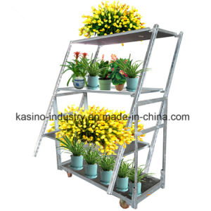 Hot Sale Garden Folding Flower Transportation Display Rack/Cart/Trolley pictures & photos
