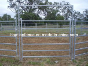 Australia Cattle Farm Equipment Cattle Yard Panel pictures & photos