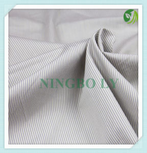 T/C or 100% Cotton Shirting Fabric pictures & photos