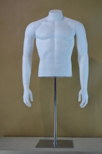 Muscular Male Half Mannequin Torso for Window Display pictures & photos