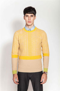 Whosale Round Neck Knitting Sweater for Men pictures & photos