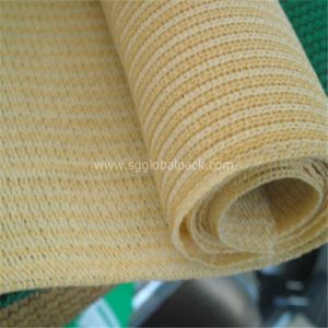 China Agricultural Sun Shade Plastic Net pictures & photos