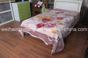 Raschel Mink Acrylic Blanket pictures & photos