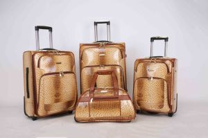 Africa Market Hotsale Luggage Trolley Case Jb010 pictures & photos