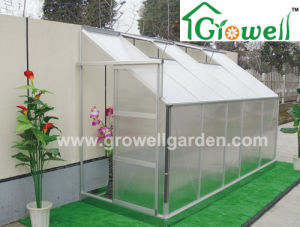 Lean-to Hobby Greenhouse for Limited Space (LB512) pictures & photos