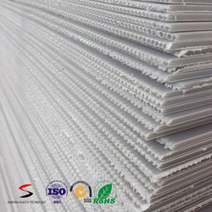 Twinwall/ Coreflute/ Corrugated/ Hollow PP Sheet/ Corrugated PP Board pictures & photos