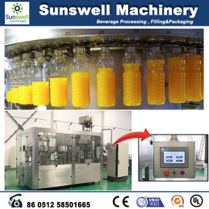 Full Automatic Pet Bottle Juice Producing Line pictures & photos