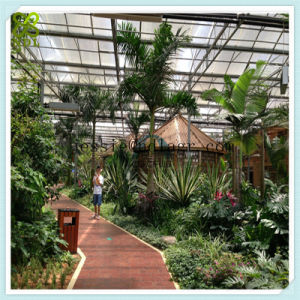 Tempered Curved Glass Greenhouse with Exhaust Fans      pictures & photos