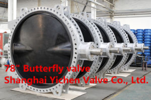 Lever Wafer Metal Hard Sealing, Fluorine Plastic Sealing Eccentrivity Butterfly Valve (D73H) pictures & photos
