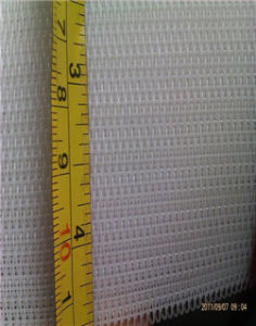 Nylon Wire Mesh Belt pictures & photos