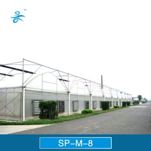 Sp-M-8 Multi-Span Plastic Film Greenhouse