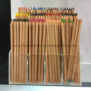 Cedar Colour Pencil Set for Kids pictures & photos