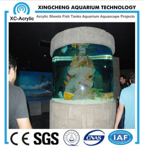 Cylindrical Glass Fish Tank pictures & photos