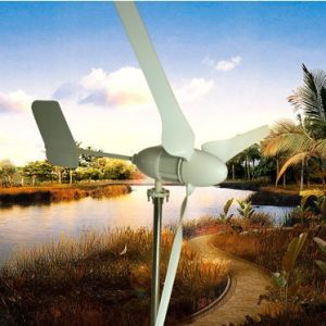 1kw Wind Power Generator (EW-1000W)