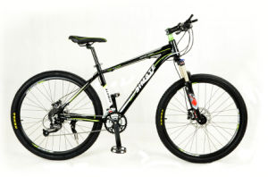 Mountain Bicycle with Suspension SUS-MTB 002 pictures & photos