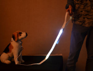 Bright Light and Soft Leashes Comfortable for Dogs Various Colors pictures & photos