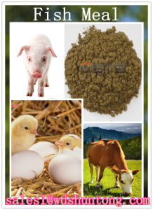 High Quality Animal Feed Fish Meal pictures & photos