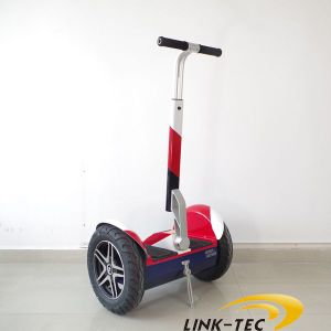 Wind Rover Cheap Adult Electric Motorcycle with CE pictures & photos