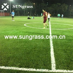 50mm Football/Soccer Artificial Grass (SUNJ-AL00003) pictures & photos