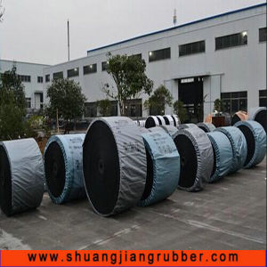 Whole Core Flame Retardant Conveyor Belt (500 temprature resistant) pictures & photos