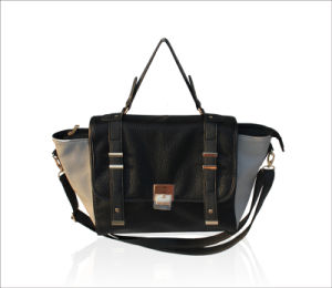 Fashion Handbag, Lady Handbag, Punk Style Handbag (E23270)