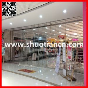 Auto Shopfront Commercial Roller Grille, Commercial Roller Grille Door (ST-02) pictures & photos