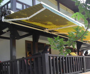 Motorzied Basic Retractable Awning for Commerical and Residential