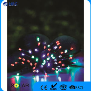 Plastic Material Solar String LED Light with Multicrystal Silicon pictures & photos