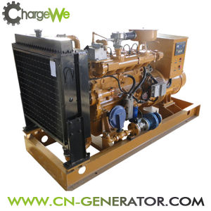 China Brand Biogas Biomass Gas Natural Gas Generator Set (20-100kw) pictures & photos